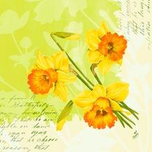 Duni Dunisoft-Servietten Spring Flowers 40 x 40 cm 60 Stück