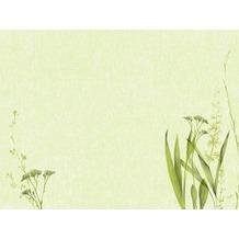Duni Papier-Tischsets, Motiv Liz 30x40cm 250 St.
