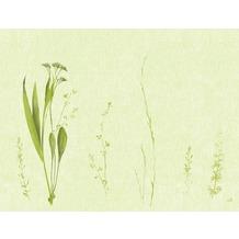 Duni Papier-Tischsets, Motiv Liz 35x45cm 250 St.