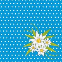 Duni Servietten 3-lagig Motiv Edelweiss Blue 33 x 33 cm 20 Stück