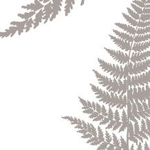 Duni Servietten 3-lagig Motiv Filix Cream 33 x 33 cm 20 Stück