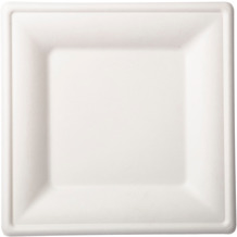 Duni Duni Teller Bagasse weiß 26 x 26 cm 10er