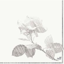 Duni Zelltuch-Servietten Grey Rose 33x33 cm 3lagig, 1/ 4 Falz 50 Stück