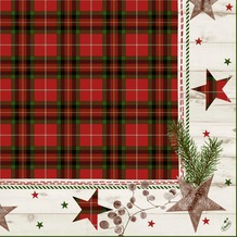 Duni Zelltuch-Servietten Naturally Christmas 40x40 cm 3lagig, 1/ 4 Falz 250 Stück