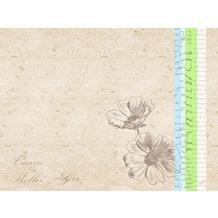 Duni Papier-Tischsets 30 x 40 cm Zendo Green, 250 Stück