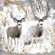 Duni Servietten, Tissue 3lagig, Motive, 20er 33 x 33 cm Reindeers & Berries, Hirsch