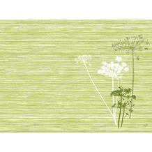 Duni Tischsets aus Dunicel Motiv Achillea green, 30 x 40 cm, 100 Stück