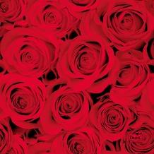 Duni Tissue Servietten Red Roses 24 x 24 cm 20 Stück