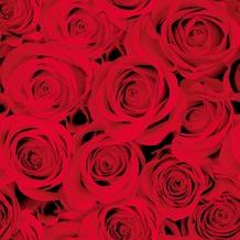 Duni Tissue Servietten Red Roses 33 x 33 cm 20 Stück