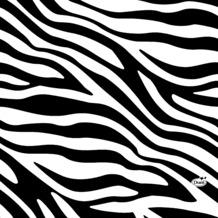 Duni Tissue Servietten Zebra Stripe 33 x 33 cm 20 Stück