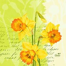 Duni Zelltuch Servietten Spring Flowers 24x24 cm 3lagig, 1/ 4 Falz 50 Stück