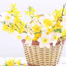Paper+Design Servietten Tissue Daffodil Basket 33 x 33 cm 20er