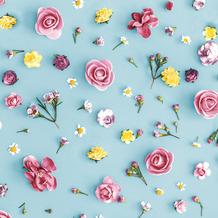 Paper+Design Servietten Tissue Spring Melody 33 x 33 cm 20er