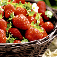 Paper+Design Servietten Tissue Strawberries 33 x 33 cm 20er
