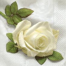 Paper+Design Servietten Tissue So beautiful 33 x 33 cm 20er