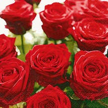 Paper+Design Servietten Tissue Splendid roses 33 x 33 cm 20er