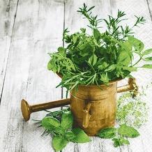 Paper+Design Servietten Tissue Variety of herbs 33 x 33 cm 20er