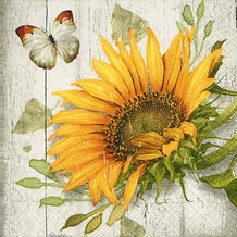 Paper+Design Servietten Tissue Vintage sunflower 25 x 25 cm 20er