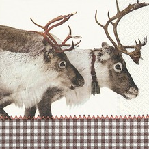 Paper+Design Tissue Servietten Reindeer 33 x 33 cm 20 Stück