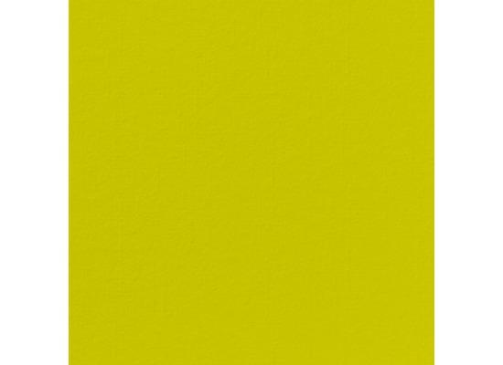 Duni Poesie-Servietten aus Dunilin Uni kiwi, 40 x 40 cm, 12 Stück