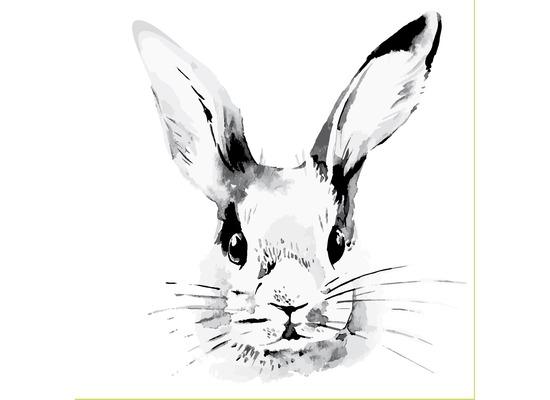 Duni Servietten Bunny Face 33 x 33 cm 20 St.