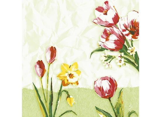 Duni Zelltuchservietten Red Tulip 40 x 40 cm 250 Stück