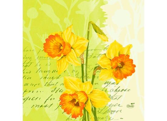 Duni Zelltuch Servietten Spring Flowers 33x33 cm 3lagig, 1/4 Falz 250 Stück