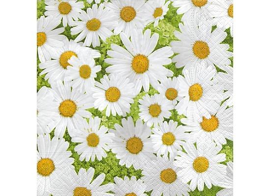 Paper+Design Servietten Tissue Daisies allover 33 x 33 cm 20er